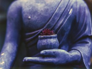 Weekend Retreat: Introduction to Meditation, Registration Closed