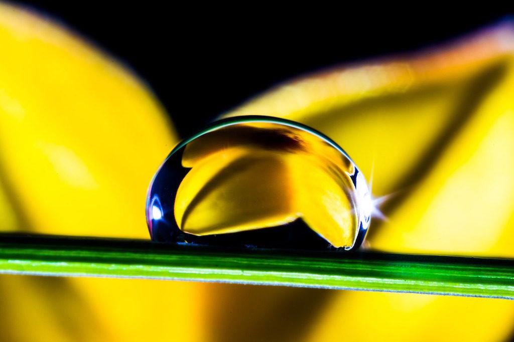 koam drop water blade gfrass