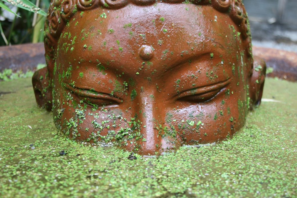 buddha in all realms