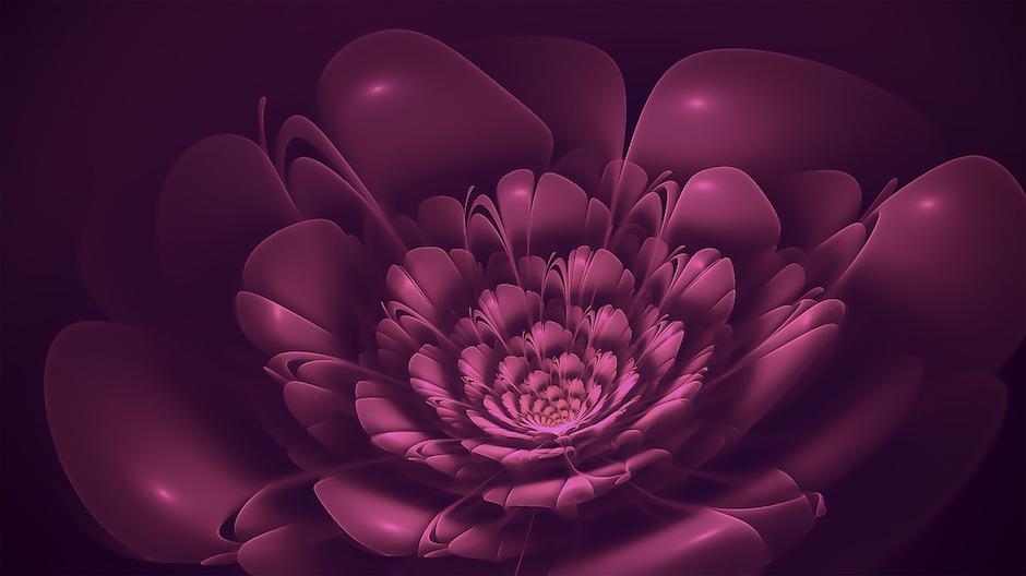 fractals bloom metamorphosis