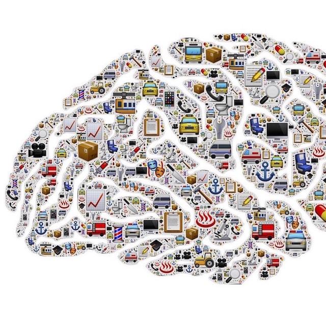brain mind obsession