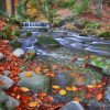 mountain river autumn here now
