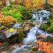 mountain river autumn life happens only now