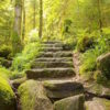 path Stone stairs