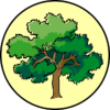 tree-310207_640